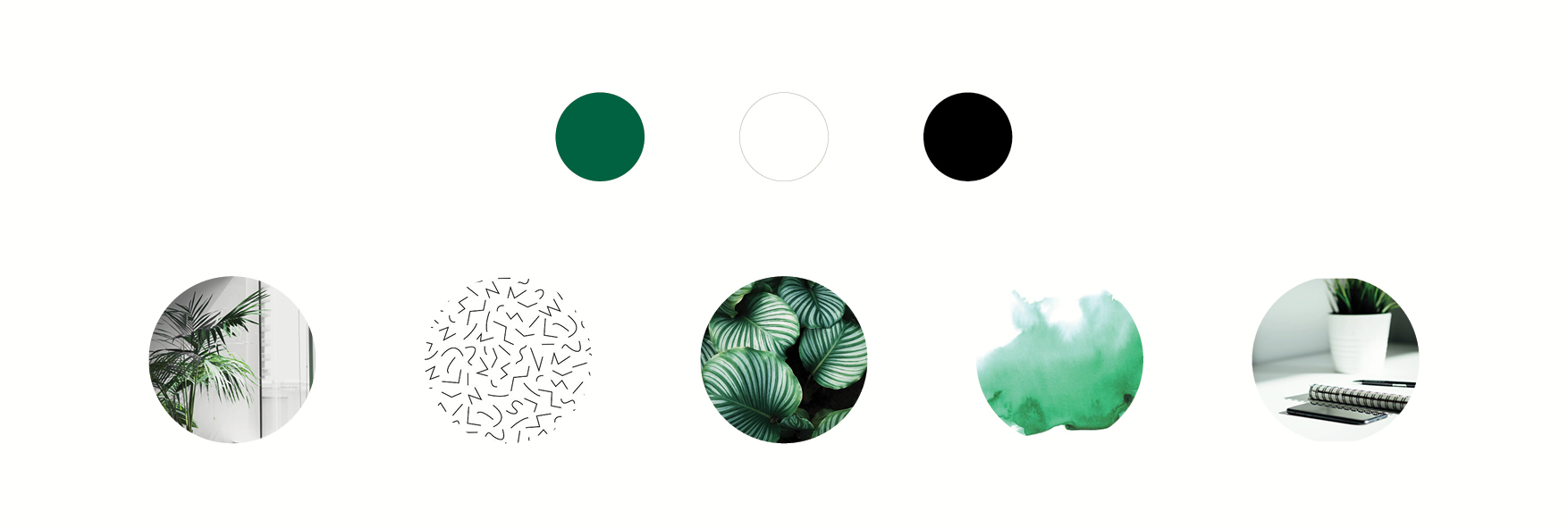green black and white colour palette and mood board